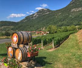 Jacquere, Chardonnay, Altesse  - Cremant de Savoie -  La Cave du Prieure -Jongieux
