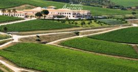 Nero d'Avola, Cabernet Sauvignon - Mezzacorona, Sicilië