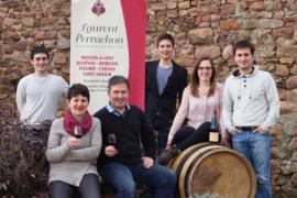 Gamay - Moulin a Vent -  Laurent Perrachon 2018