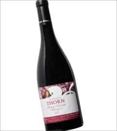Pinot Noir - Wijngoed Thorn - Maasvallei - Nederland