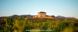 Tempranillo - El Pacto Rioja Crianza - Giftpack - Vintae