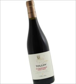 Pinot Nero - Trentino, Tolloy