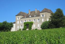 Chardonnay - Macon La Roche Vineuse Vieilles Vignes - Bourgogne - Chateau de la Greffiere