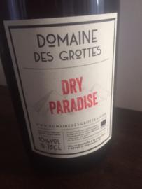 Dry paradise 2019