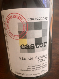 Castor 2017