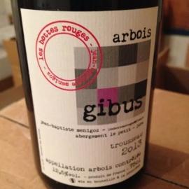 Gibus 2015