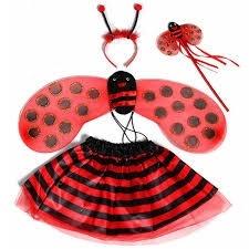 Lieveheersbeestje verkleedset