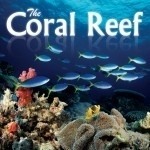 CD The Coral Reef