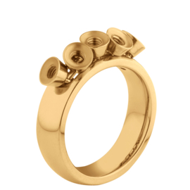 Twisted ring Tess goud