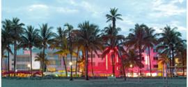Stenzo paneelstof Boulevard met palmbomen 2018