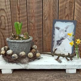Diy pakket voorjaar/paas