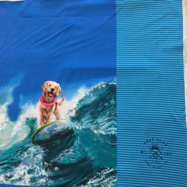 Paneelstof hond op surfplank