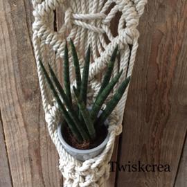 Wandplantenhanger macramé