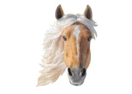 I Am Mini - Paard