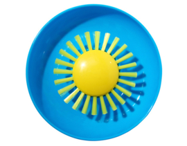 Moluk Pluï Sunny