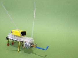 Bibberbeest met afstandsbediening