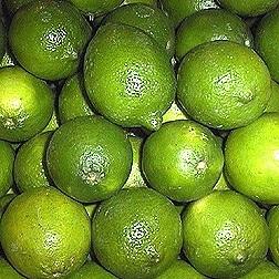 Limoenschil gedestilleerd BIO - citrus aurantifolia