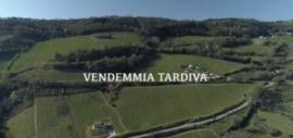 Centanni Proefdoos Vendemia Tardiva
