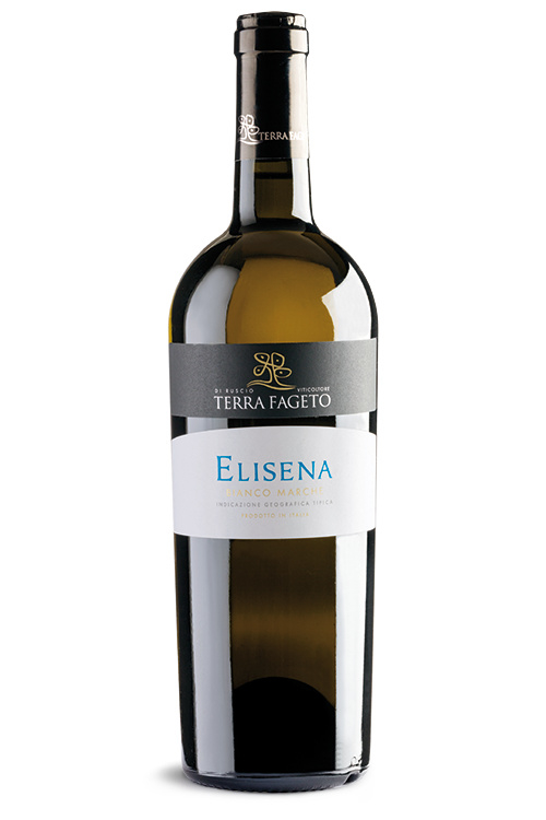Terre Fageto - Marche Bianco IGT - Elisena - Riserva