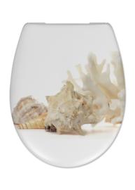 Cedo Shell Toiletzitting/siège wc Multi