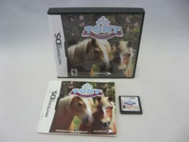 Pony Friends (USA)