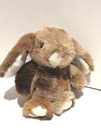 Bouncy Bunny Bruin