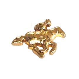 paard en ruiter, goudkleurige charm voor in het medaillon