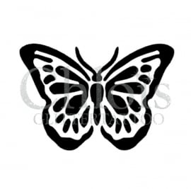 Butterfly Bold
