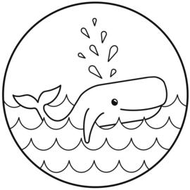 Muurcirkel - Walvis