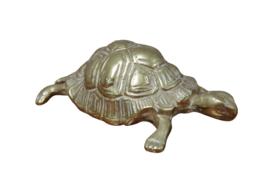 Messing schildpad