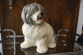 Beeld hond