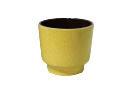 Gele bloempot