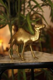 Messing kameel