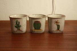 Set van drie cactuspotje