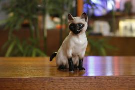 Katttenbeeldje