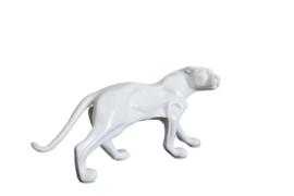 Wit panterbeeld