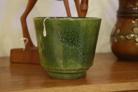 Groene bloempot