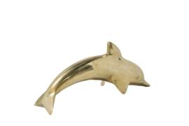 Messing dolfijn