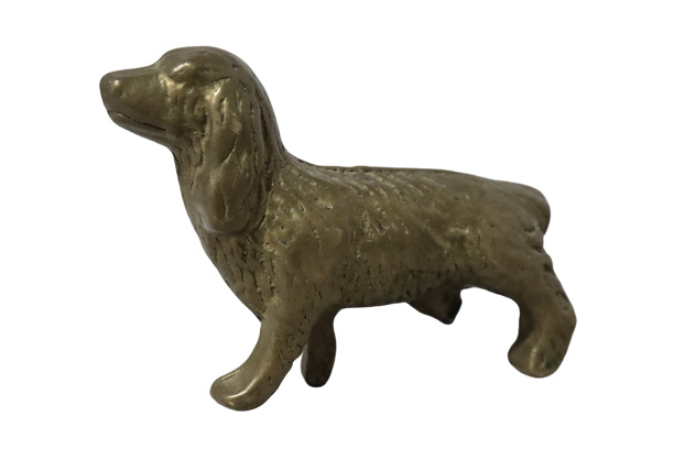 Messing hondje