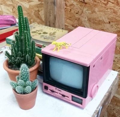 5 Studiosloddervos - roze televisie (Custom).jpg