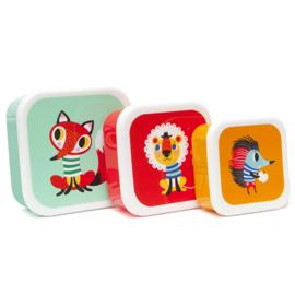 Helen Dardik lunchbox set Animals