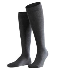 Family Knee - anthracite - katoenen kniekousen Falke, maat 39-42 (heren)