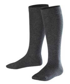 Family Knee - anthracite - katoenen kniekousen Falke, maat 39-42 (dames en tieners)