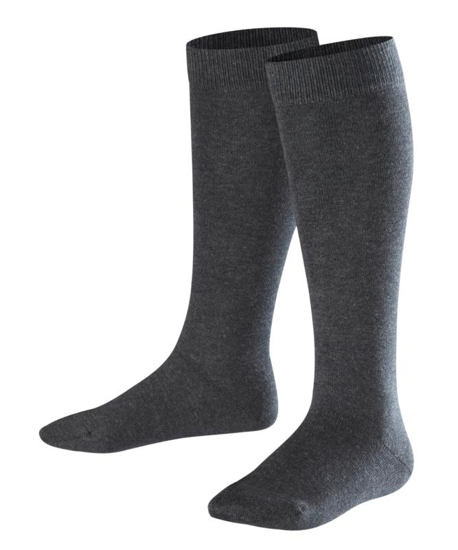 Family Knee - anthracite - katoenen kniekousen Falke, maat 35-38