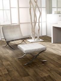 Dynamic Wood 2015 (Prijs op aanvraag, of kom langs in onze winkel.)