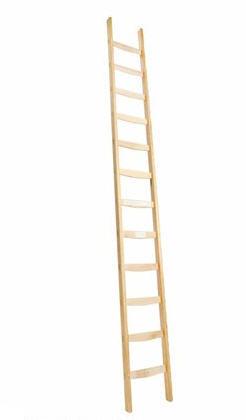 Ladder met verticale sporten