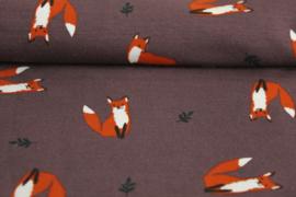 TR2 Fox