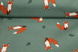 TR3 Fox