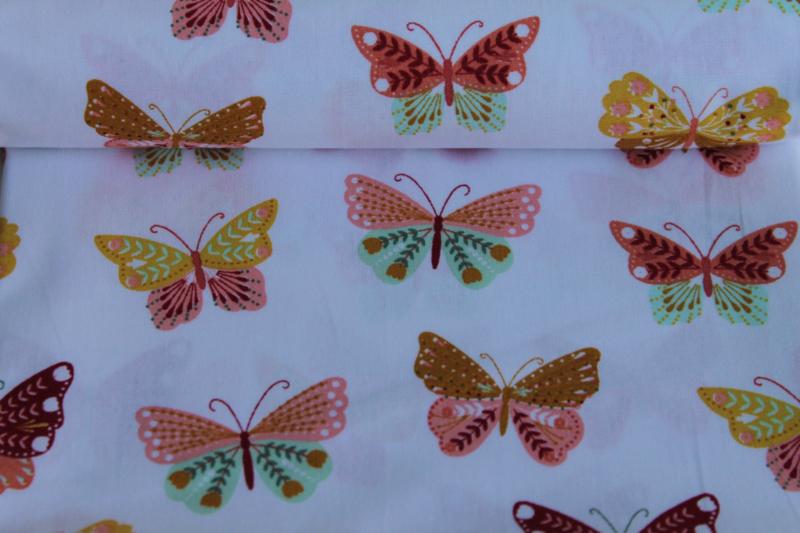 Papillon Light