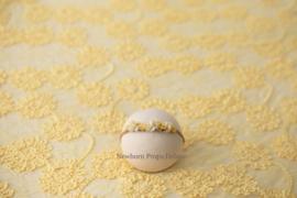 Luxe Lace Backdrop (geel) (NIEUW)